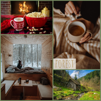forest moodboard: cosy spaces and trees